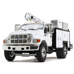 Ford F-650 with Maintainer Service Body