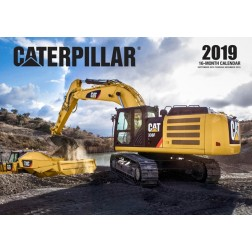 2019 Caterpillar Calendar (16-Month Wall Calendar)